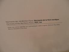 3. Paul Klee (176)