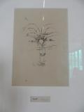 3. Paul Klee (19)