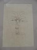 3. Paul Klee (20)