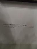 3. Paul Klee (343)