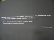 3. Paul Klee (382)