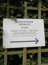 Olafur Eliasson à Versailles (208)