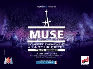 1. Muse (1)