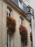 De Saint Germain à Beaubourg (8)