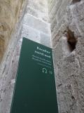 Au Mont Saint Michel (354)