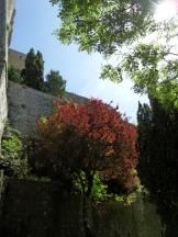 Au Mont Saint Michel (426)