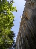 Au Mont Saint Michel (427)