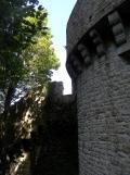 Au Mont Saint Michel (434)