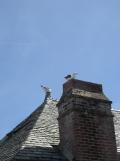 Au Mont Saint Michel (448)
