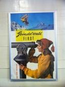 grindelwald-first-228
