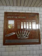 grindelwald-first-54