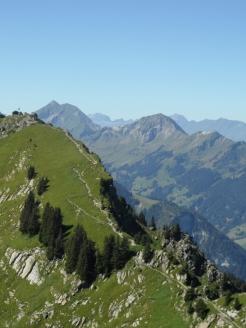wilderswil-schynige-platte-149