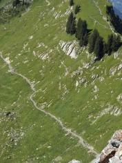 wilderswil-schynige-platte-151