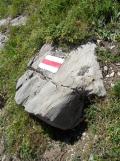 wilderswil-schynige-platte-162