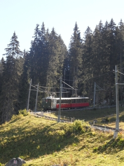 wilderswil-schynige-platte-36