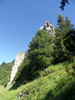 wilderswil-schynige-platte-90