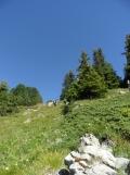 wilderswil-schynige-platte-99