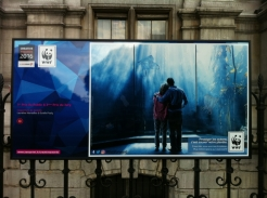 WWF creative awards 2016 (26)
