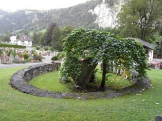 2-lauterbrunnen-143
