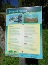 murren-stechelberg-94