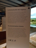 1-galerie-de-la-mediterranee-9