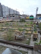 le-grand-train-30