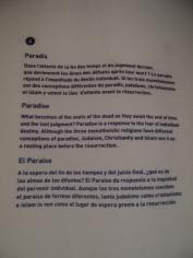 religions-et-citoyennete-66