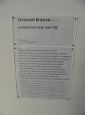 1. Art moderne - Pompidou (18)