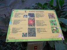 la-serre-aux-papillons-65