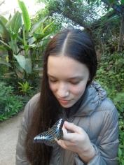 la-serre-aux-papillons-81