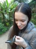 la-serre-aux-papillons-84