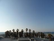 5. Tel Aviv (1)