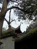 Autour de Yuyuan (100)