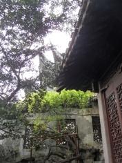 Autour de Yuyuan (123)
