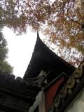 Autour de Yuyuan (139)