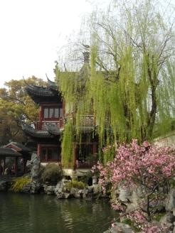 Autour de Yuyuan (156)
