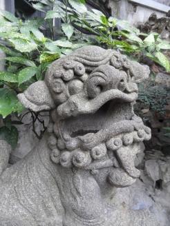 Autour de Yuyuan (157)