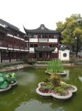 Autour de Yuyuan (54)