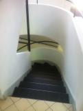 La Villa Savoye - Le Corbusier (119)