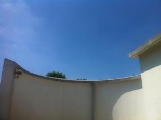 La Villa Savoye - Le Corbusier (164)