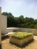 La Villa Savoye - Le Corbusier (179)
