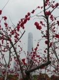 Shanghai - First impression (45)