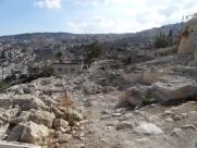 City of David (101)