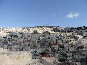 City of David (102)