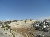 City of David (12)