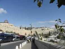 City of David (2)