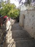 City of David (31)