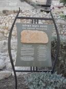 City of David (85)