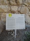 City of David (88)