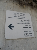 City of David (95)